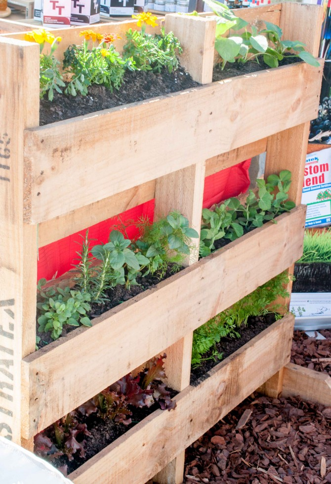 Merveilleux How To Build A Vertical Pallet Garden