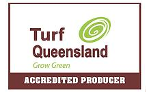 Gavin, Turfgrass – Mackay, Queensland
