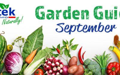 September Garden Guide 2018