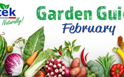 February Garden Guide 2018