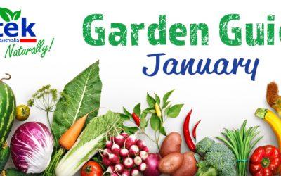January Garden Guide 2018