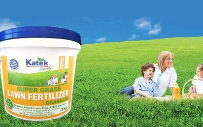 The Best Lawn Fertilizer + When & How to Fertilise your Lawn