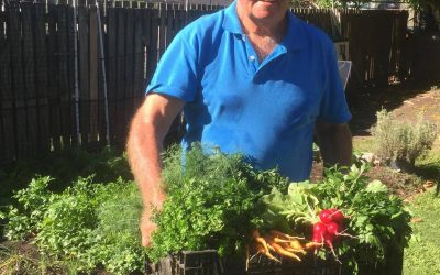 Ross Cotton & The Veggie Patch, Hervey Bay Qld