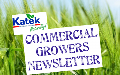 Katek Commercial Growers Newsletter July-September 2020